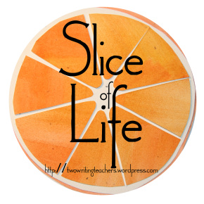 I try to participate in the Slice of Life writing challenge every Tuesday.  You can read more at twowritingteachers.wordpress.com